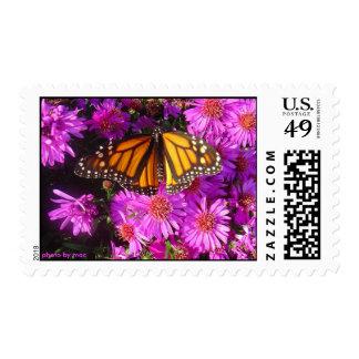 Migrating Monarch Postage Stamp