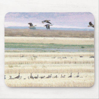 Migrating White Fronted Geese Birds Wildlife Mouse Pad