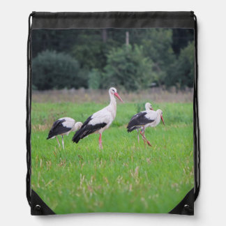 Migrating white storks, ciconia, in a meadow drawstring bag