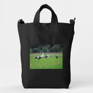 Migrating white storks, ciconia, in a meadow duck bag