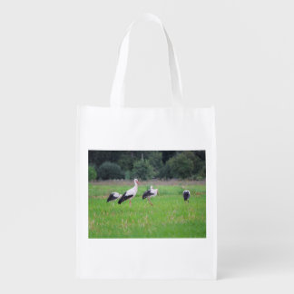 Migrating white storks, ciconia, in a meadow grocery bag