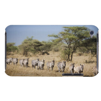 Migrating zebra, Tanzania Barely There iPod Cases