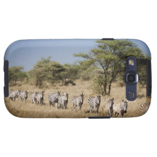 Migrating zebra, Tanzania Galaxy SIII Cases