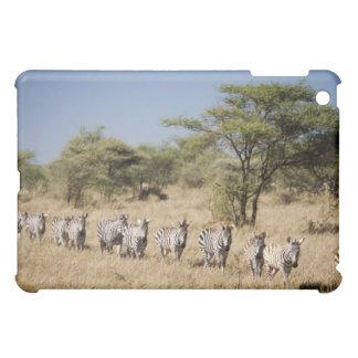 Migrating zebra, Tanzania Cover For The iPad Mini