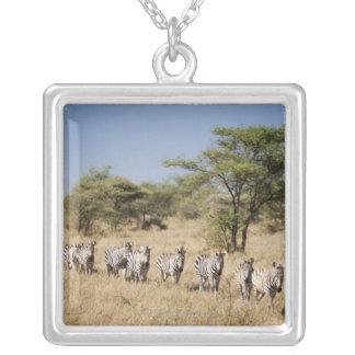 Migrating zebra, Tanzania Pendants