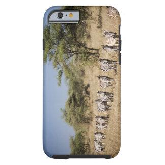 Migrating zebra, Tanzania Tough iPhone 6 Case