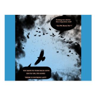 """Migration Birds In Turmoil""* Post Cards"