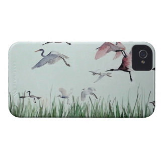 Migration Case-Mate iPhone 4 Case