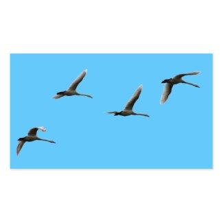 migratory birds business card template