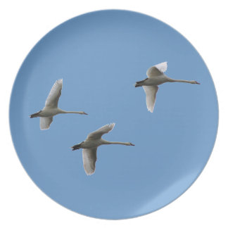 migratory birds dinner plate