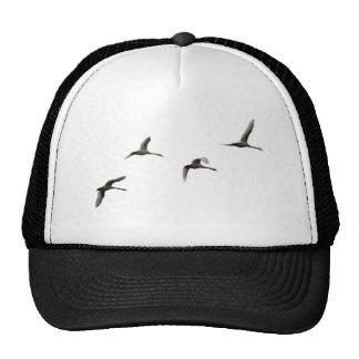 migratory birds trucker hat
