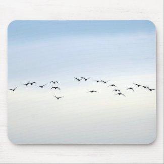 migratory birds mousepads