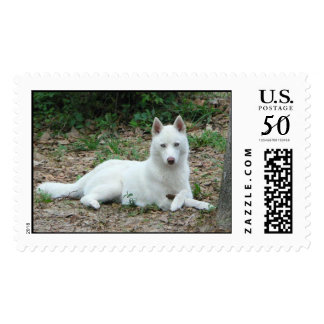Mika's Stamp 2