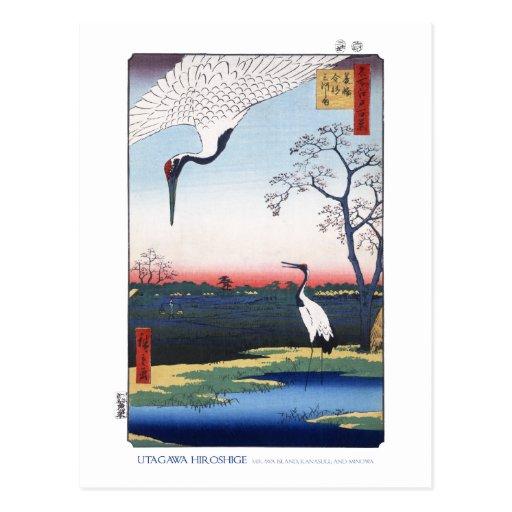 Mikawa Island Postcard