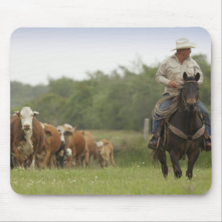 Mike Campbell returning with cows, Seadrift, Mouse Pad