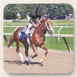 Mike Dilger Filly Beverage Coaster