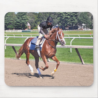 Mike Dilger Filly Mouse Pad