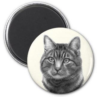 Mike, gato de tigre imán
