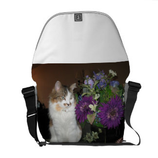 Mike the cat bag