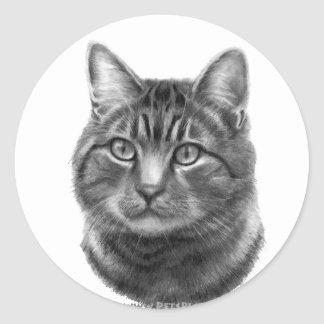 Mike, Tiger Cat Classic Round Sticker