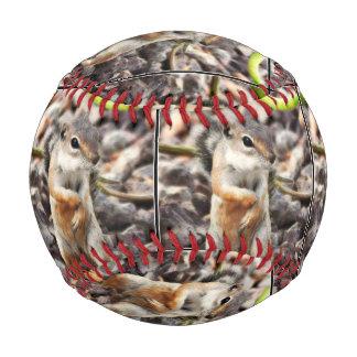 """Mikey"" Ground Squirrel Baseball"