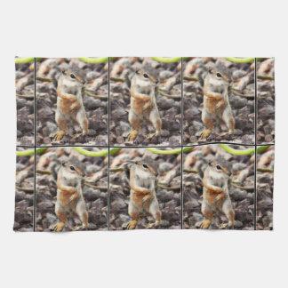 Mikey Ground Squirrel Kitchen Towel