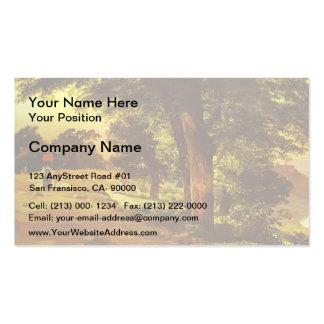 Mikhail Lebedev- In Giji Park Business Cards
