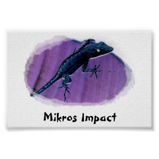 MIKROS IMPACT SMALL LIZARD POSTER