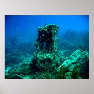 Mil pasos subacuáticos - Bonaire Póster