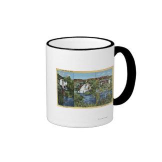 Mil primaveras, identificación - enebro, ala, y Mi Tazas De Café