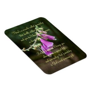 Milagro de la placa del poema de la amistad imán foto rectangular