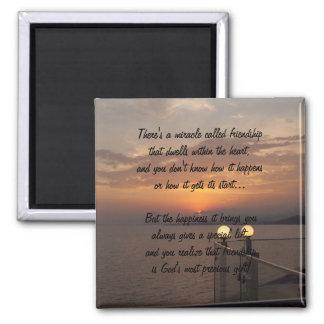 Milagro del imán del poema de la amistad