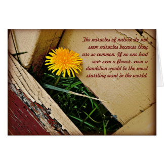 Milagros de la naturaleza tarjeta de felicitación