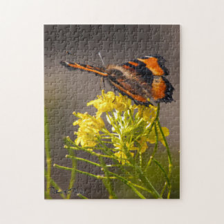 Milbert's Tortoiseshell Butterfly Close Up Puzzles