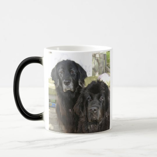Mildred & Harry-It Magic Mug