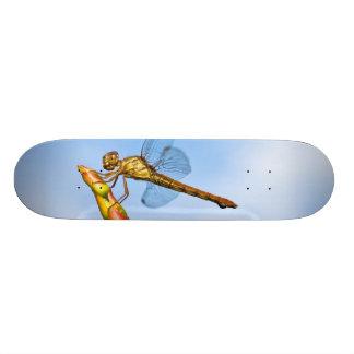 miles behind me skateboard deck