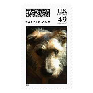 Miles Postage Stamps