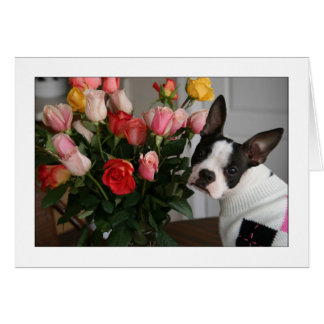 Miley with Roses Card
