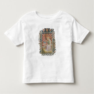 Militant Justice, from the Salone del Consiglio (C T-shirt