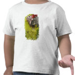 Military macaw (Ara militaris) CAPTIVE. Amazon 2 T-shirt