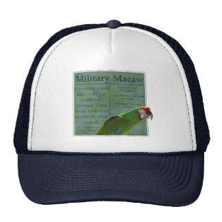 Military Macaw Hat