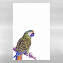 Military Macaw Parrot Dry Erase Magnetic Sheet