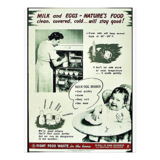 Milk And Eggs - Naturr's Food Flyers