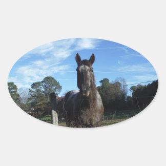 Milk Chocolate Brown Horse in Blue Oval Sticker