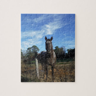 Milk Chocolate Brown Horse in Blue Jigsaw Puzzles
