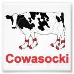 Milk Cow in Socks - Cowasocki Cow A Socky Photo Art