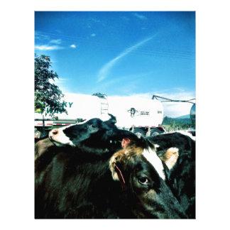milk truck letterhead