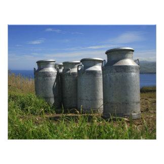 Milk urns flyer
