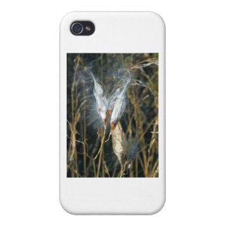 Milk Weed Pods Case For iPhone 4