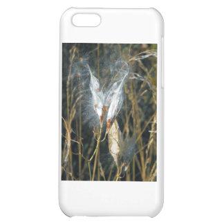 Milk Weed Pods iPhone 5C Cases